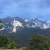 Determined Karen conquers Kinabalu for Contented Dementia Trust!